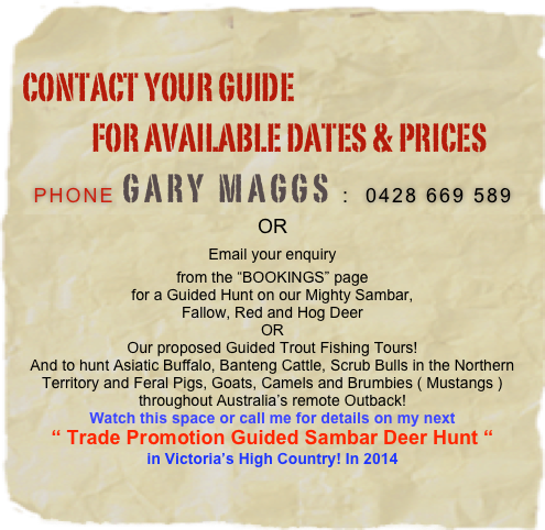 "contact Your guide              FOR available dates & PRICES Phone Gary Maggs :  0428 669 589 OR Email your enquiry from the ""BOOKINGS"" page for a Guided Hunt on our Mighty Sambar, Fallow, Red and Hog Deer OR Our proposed Guided Trout Fishing Tours! And to hunt Asiatic Buffalo, Banteng Cattle, Scrub Bulls in the Northern Territory and Feral Pigs, Goats, Camels and Brumbies ( Mustangs ) throughout Australia's remote Outback! Watch this space or call me for details on my next "" Trade Promotion Guided Sambar Deer Hunt "" in Victoria's High Country! In 2014"